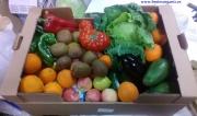 fruta y verdura ecologica brotes organic