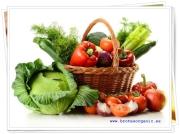 fruta y verdura ecologica BODEGON ECOLOGICO