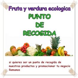 PUNTO DE RECOGIDA