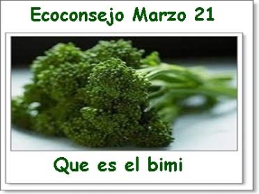 Ecoconsejo semanal