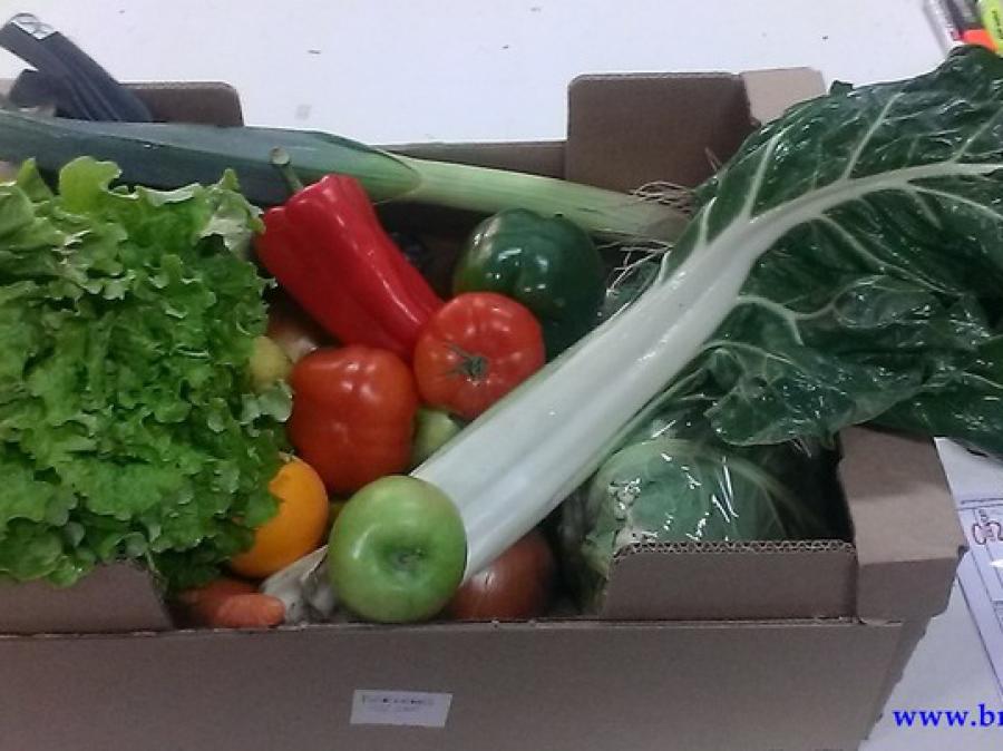 caja fruta y verdura ecologica 35€